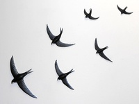 6 Swifts (modelling clay)