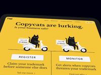 Trademarking landing page