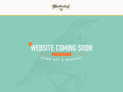 Meadowlark Splash Page