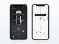 Connected car control app for Singulato