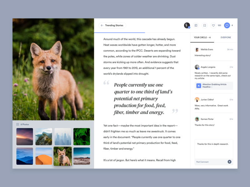 News Article - Comments journalism network comment post article news website ux web ui design icon icons