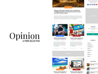 Opinion - A free blog psd