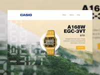 Casio Email Concept #2