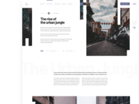 Article Layout 2