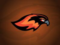 Detroit Firebirds