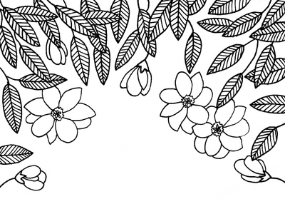 Magnolia Coloring Page line art white and black floral flowers book coloring adult