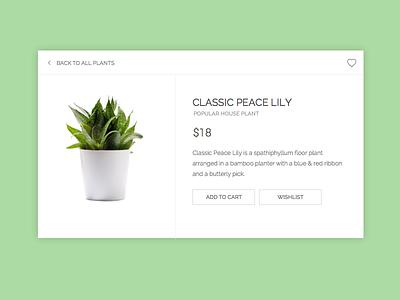 Day 12 // E-commerce (Single item) daily ecommerce design ui challenge 012 dailyui