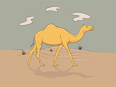 Camel sand arabian desert camel