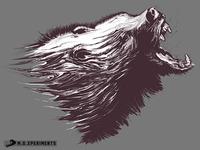 The Wild - Bear