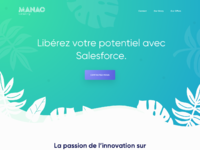 Manao consulting   landing page