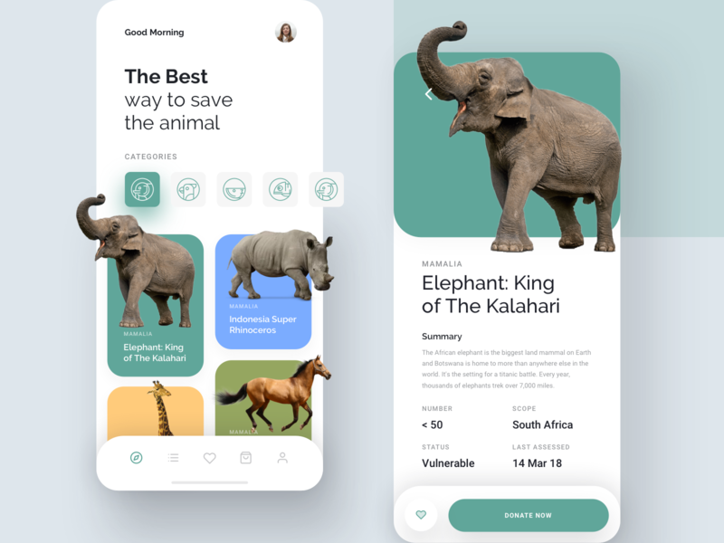 Kewan - Animal Conservation App pet sketch forest ux mobile app ios donate dashboard charity donation conservation animal ui app