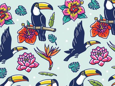 Toucans pattern
