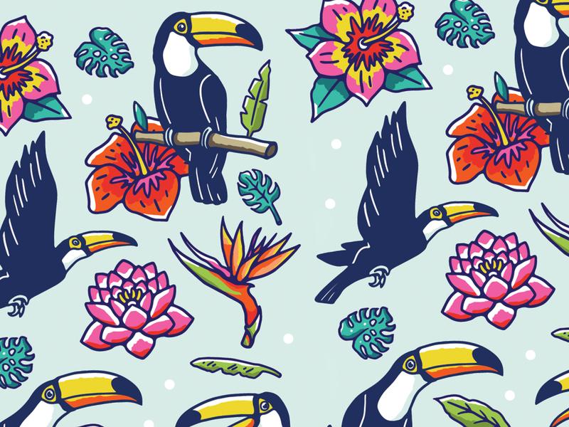 Toucans pattern pattern design graphic design illustration