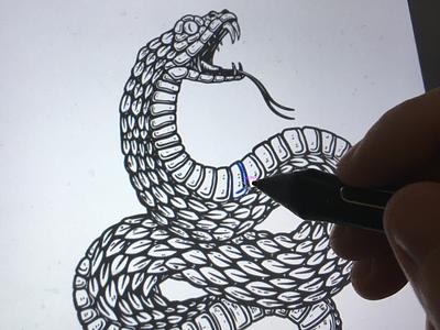 Drawing snake in @procreate engraving poison venom ipad pro sketching procreate viper snake