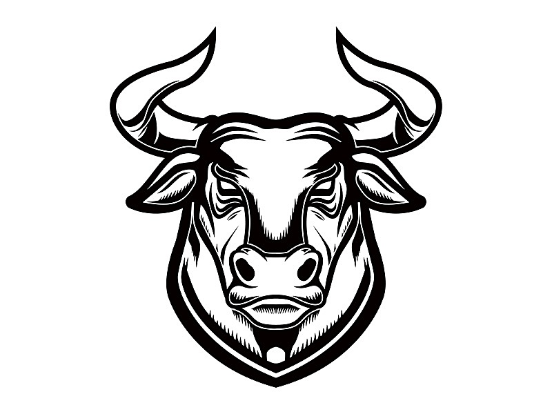 Bull head logotypedesign sign brand mark vintage logotype bison buffalo cow logo bull
