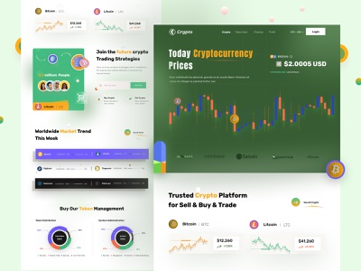 Crypto Currency landing page illustration creative design popular design wallet coin web crypto cryptocurrency bitcoin ethereum cryptowallet blockchain finance exchange trade forex landing page website webdesign home page