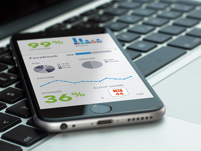 Demographics On Mobile graphs charts demographics data console dashboard reporting analytics ui ux mobile