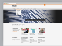 B&B Website 2013 Conceptdesign