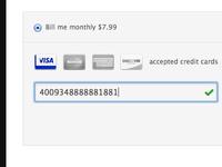 Snapjoy Payment Info