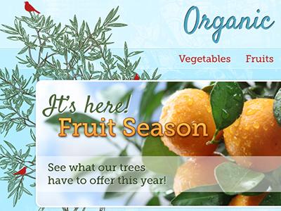 Organic Farms colorful organic blue green farms fruit illustration
