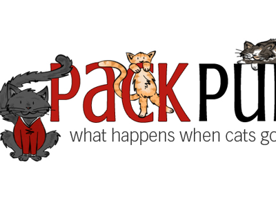 Pack Purrs Banner pack purrs design illustration banner kittens cats