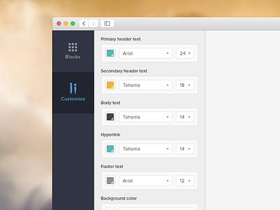 Customization Panel ui colors font size customize blocks panel builder style