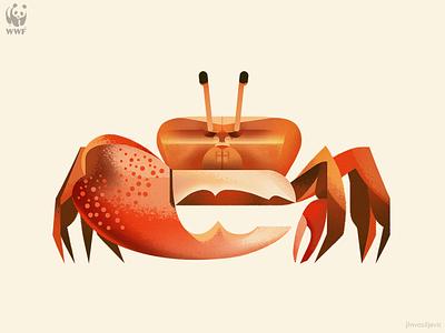 WWF Education Centre illustration, Fiddler Crab fiddler crab crab jlnvasiljevic wwf minimal design animal nature illustration