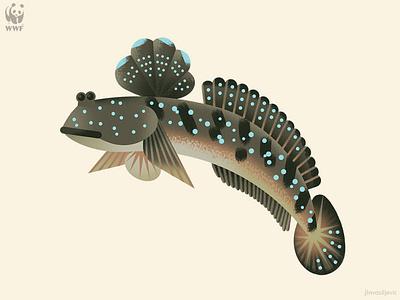 Great Blue-spotted Mudskipper minimal design photoshop vector jlnvasiljevic wwf mudskipper fish animal nature illustration