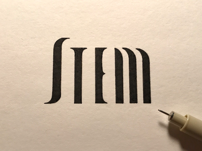 Stem: the main vertical stroke of a letter