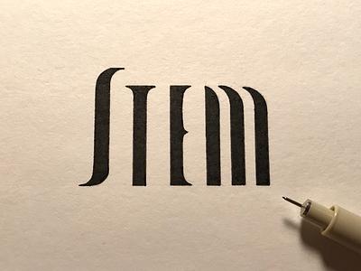 Stem: the main vertical stroke of a letter type anatomy stem handlettering custom type ink
