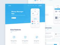 Cicis Website Design