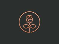 My Timeless Treasures infinity symbol rose plant logo leaf illustration flower crest badge