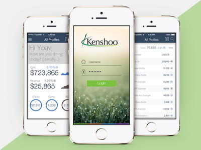 Kenshoo iOS app
