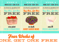 Zupans Direct Mailer — Early Fall