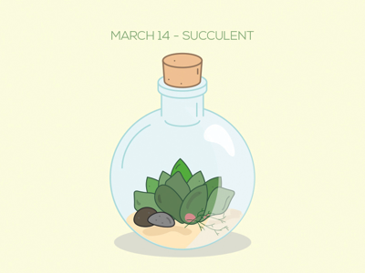 Liven up your room with succulents. terranium daily doodle illustrator flowers plant succulent