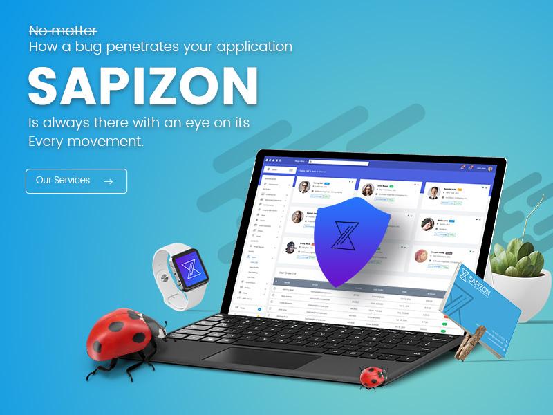 Sapizon Technologies LLC. ui graphics branding website design