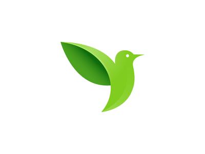 Greenbird shadow leaf green bird
