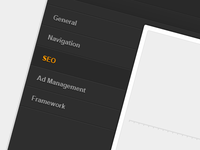 WordPress theme option framework