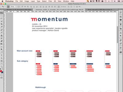 Momentum Mobile  mobile ux navigation wireframe