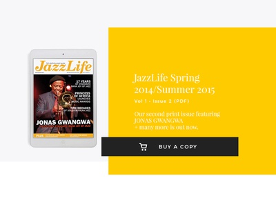 Jazzlife Email Header marketing design jazzlife magazine emailer e-commerce