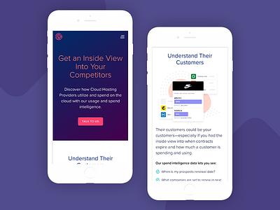 Responsive Marketing Site mobile website illustration