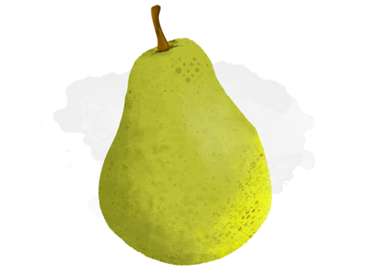 A Pear for the People  watercolor brushes fruit pear
