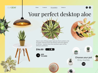 This shop brings beauty to your table. icon aloe plants green web flowers design ui