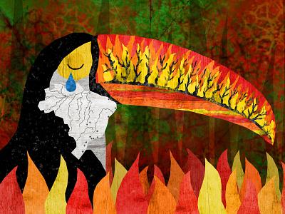BurningToucan editorial illustration editorial design editorial art climate change forest burning brazil jungle rainforest toucan tucan illustration design illustration art illustrations illustration