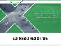 Audiskicross parks