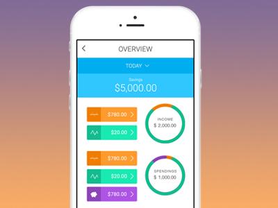 Daily Budget App charts data app ios ui