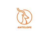 Gold Antelope