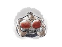 Boxer dribbbs
