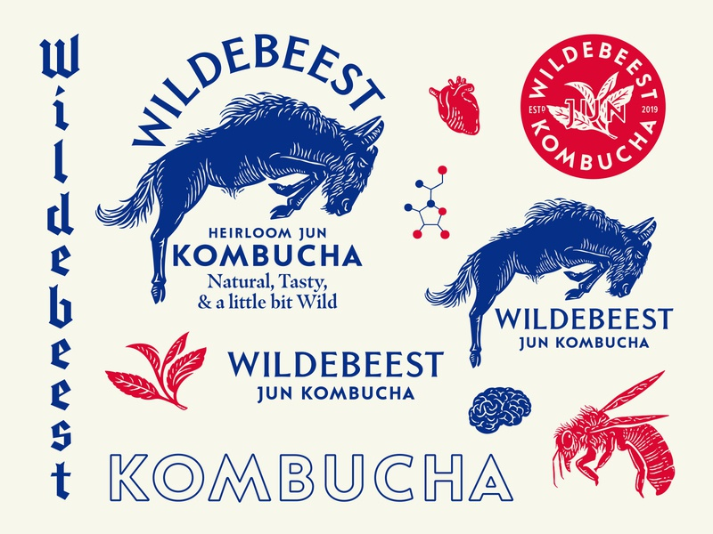 Wildebeest Jun Kombucha beverage design beverage packaging hand-drawn type illustration drinks beverage typography branding logo design