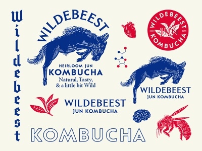 Wildebeest Jun Kombucha beverage design beverage packaging hand-drawn type illustration drinks beverage typography branding logo design